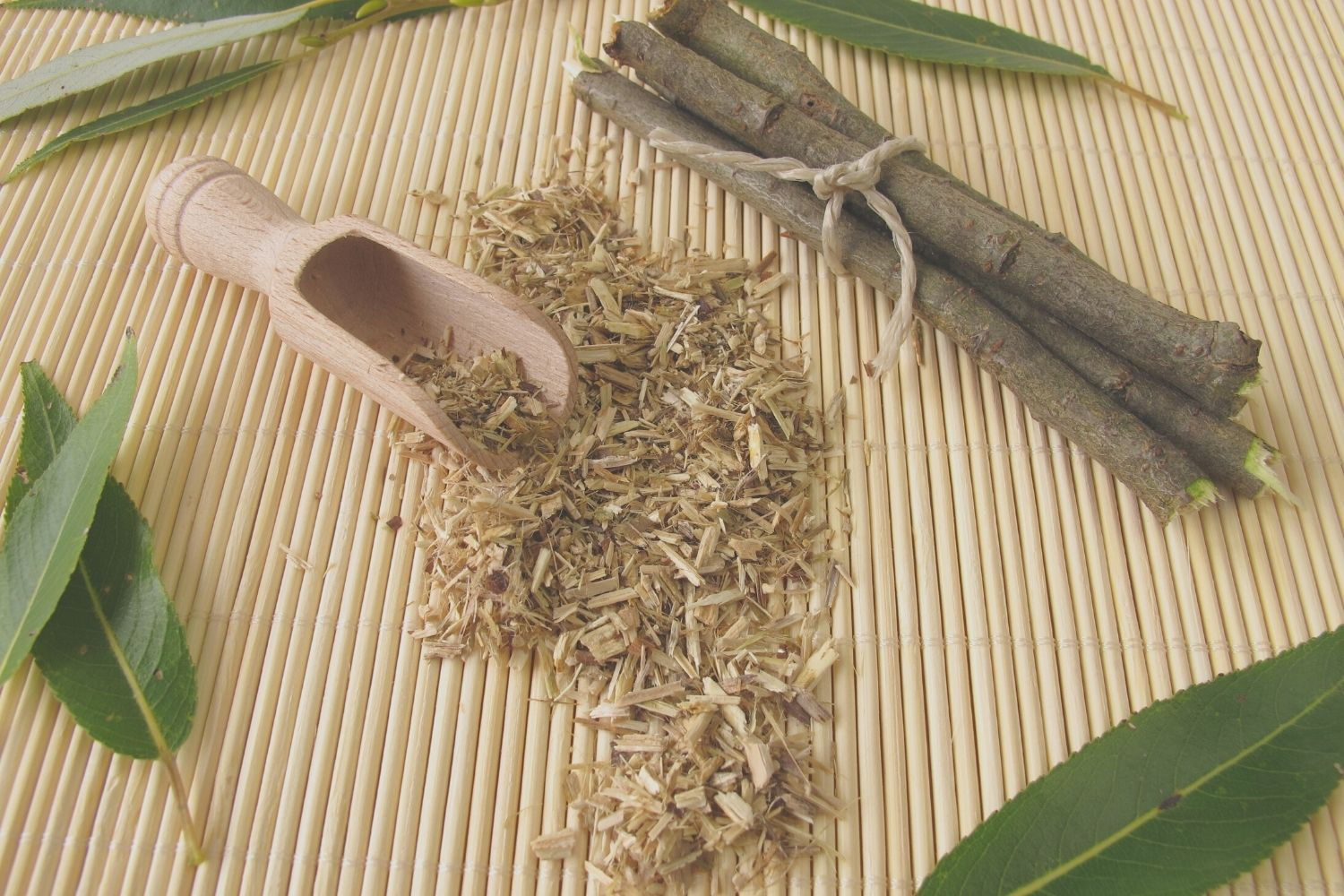 willow bark for hair care benefits